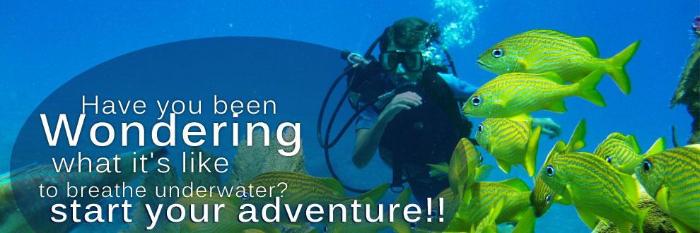 discover_scuba_diving